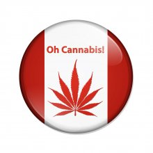 Cannabis Marijuana In Canada what should you do when crossing the border into the US?